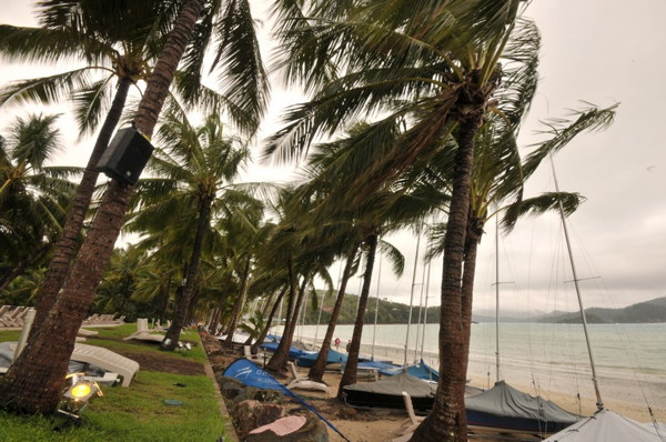 The Palms are more than swaying in the breeze today...  Photocredit: Christophe Favreau